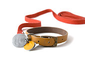 Leather dog colar with registration tags and red leash attached. Isolated on white background