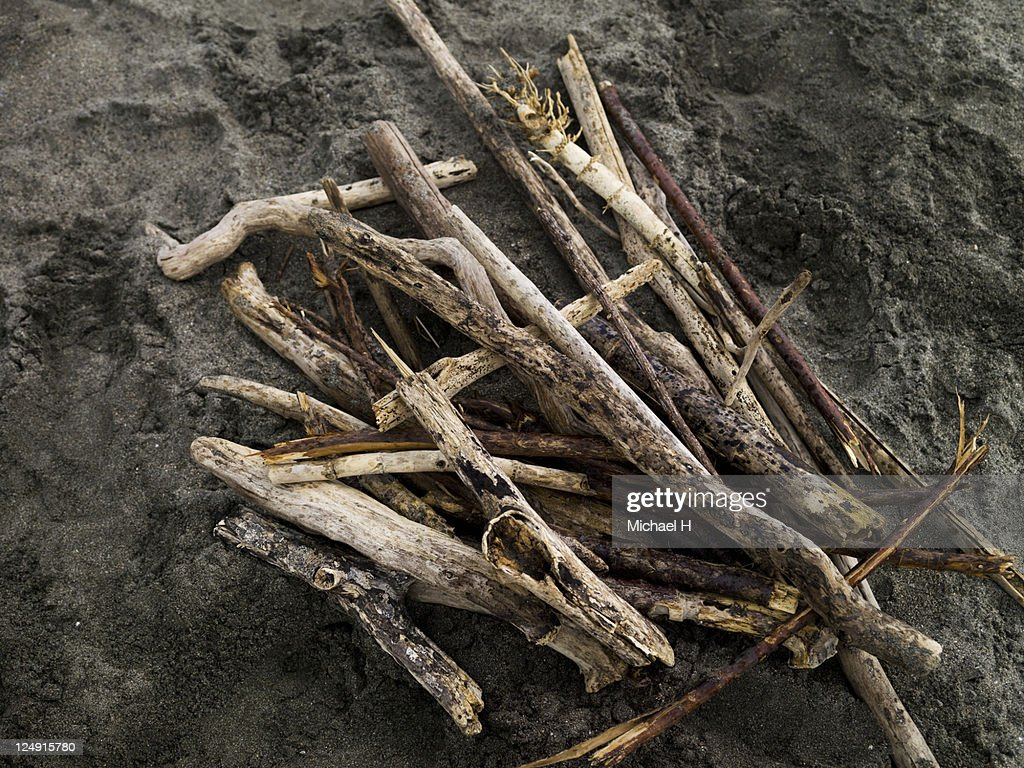 Collected driftwood : Stock Photo