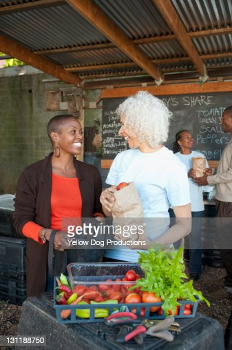 Collecting Shares at Urban Community Garden : Stock Photo