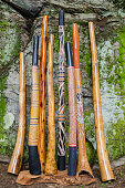 A Collection of Traditional and Handmade Didgeridoo's. Traditional  didgeridoo's are termite hollowed, non-Traditional Didgeridoo's are hollowed using one of two mechanical techniques. Three of the Di