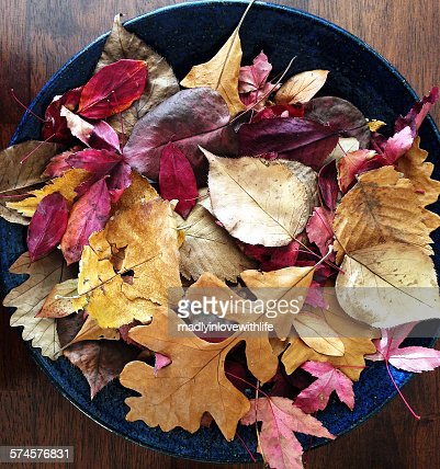 A collection of dried autumn leaves in a bowl