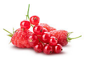 Collection of fresh berries. Raspberry, red currant, gooseberry. Clipping path