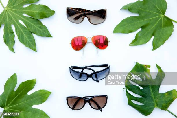 collection of sunglasses with green leaves around