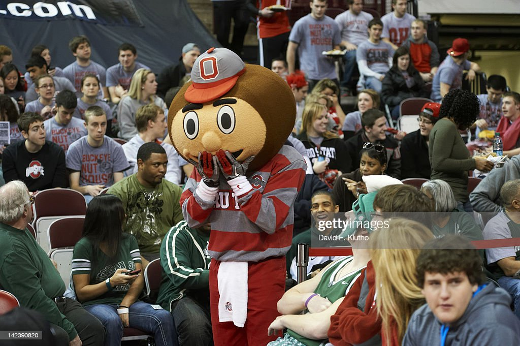 Ohio State mascot Brutus Buckeye on court during game vs Michigan State at Value City Arena at Jerome Schottenstein Center. David E. Klutho F6 )