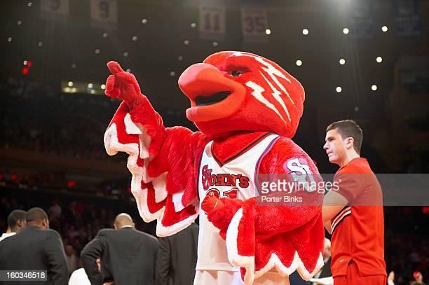 St John's Red Storm mascot during game vs Notre Dame at Madison Square Garden New York NY CREDIT Porter Binks