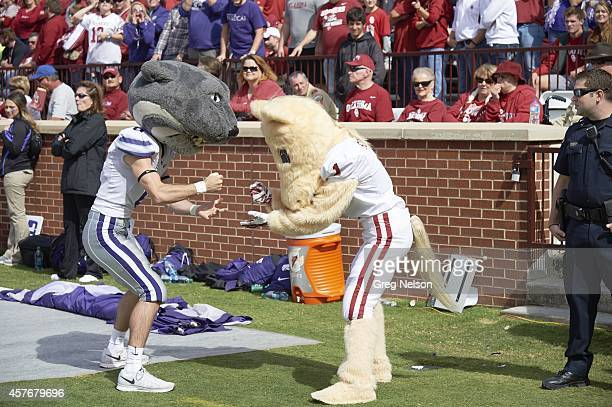 Kansas State mascot Willie the Wildcat playing rock paper scissors with Oklahoma Sooner mascot on sidelines during game at Gaylord FamilyOklahoma...
