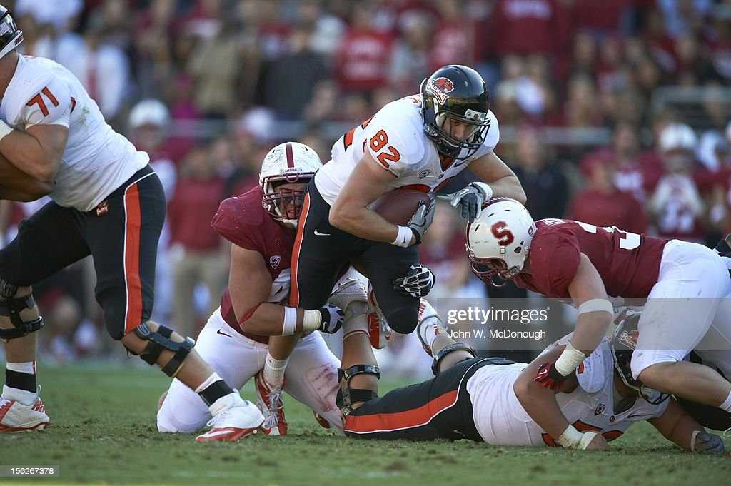 Oregon State Colby Prince (82) in action vs Stanford at Stanford Stadium. John W. McDonough F339 )