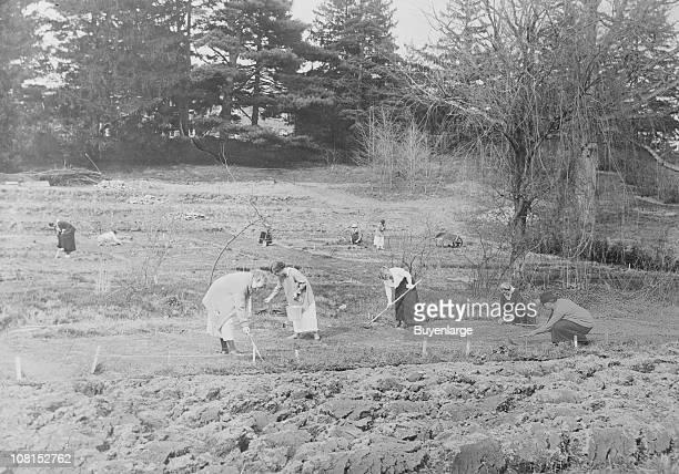 College students from Vassar college work on the farm during the summer months Poughkeepsie NY 1915 They are likely working the Vassar farm located...