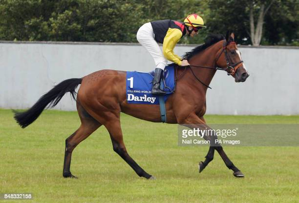 Colliding Worlds ridden by Fran Berry going to post in the The Darley Irish Oaks during the Darley Irish Oaks Weekend at Curragh Racecourse Co...
