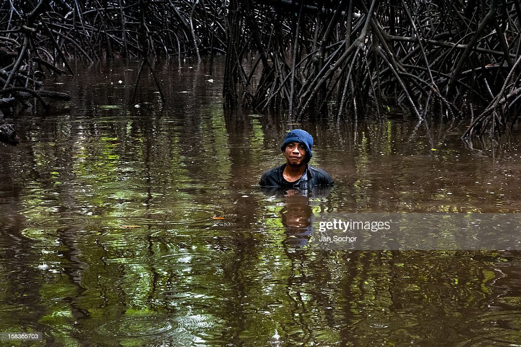 A Colombian boy stands in the water of a shallow channel in the mangrove swamps on the Pacific coast, Colombia, 12 June 2010. Deep in the impenetrable labyrinth of mangrove swamps on the Pacific seashore, hundreds of people struggle everyday, searching and gathering a tiny shellfish called piangua. Wading through sticky mud among the mangrove tree roots, facing the clouds of mosquitos, they pick up mussels hidden deep in mud, no matter of unbearable tropical heat or strong rain. Although the shellfish pickers, mostly Afro-Colombians displaced by the Colombian armed conflict, take a high risk (malaria, poisonous bites), their salary is very low and keeps them living in extreme poverty.