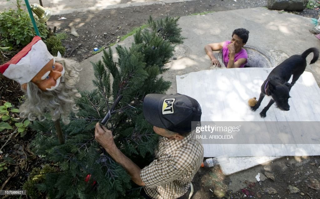 Colombian Miguel Restrepo (L) prepares a Christmas tree as his wife Maria Garcia watches from the sewer where they live on December 4, 2012, in Medellin, Antioquia department, Colombia. Restrepo, 62, is a homeless man who has lived with his wife for more than twenty years in a sewer, near Medellin's downtown. The place is around three by two by 1.4 meters of height and has a stove, a television, a bed and a fan. AFP PHOTO/Raul ARBOLEDA