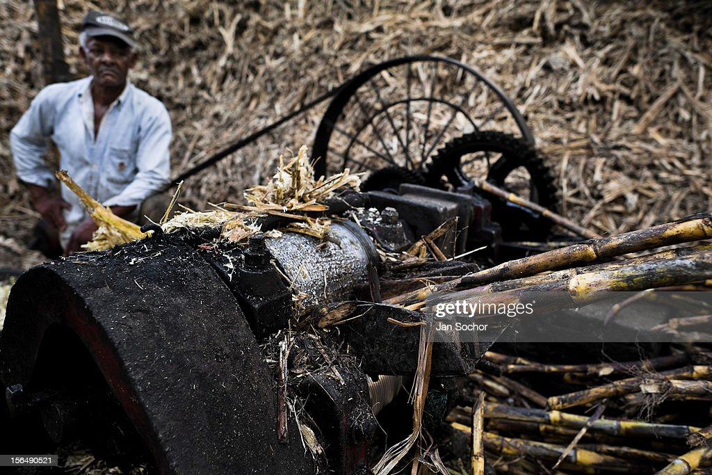 A Colombian peasant puts sugar cane stalks through a crusher during the processing of panela in a rural sugar cane mill (trapiche) in Santa Ana, Valle del Cauca, Colombia, 30 May 2012. Panela, a solid block of raw, unrefined sugar, is made by cooking and evaporation of the sugar cane juice into a golden, sticky syrup which is then poured into the wooden molds and allowed to solidify. Having the taste like a cross between molasses and brown sugar, panela is served as a hot or cold infusion called aguapanela. Due to the large amounts of proteins, vitamins and minerals and thus, panela is believed to have healing powers. Cheaper than sugar, it is consumed by the majority of Colombians and it is a major source of calories for children from families with low socioeconomic status. With more than 70,000 farms that cultivate sugarcane for mills, panela production is an important economic activity in the Colombian countryside, employing around 350,000 people and being the second largest source of jobs after agricultural coffee production.