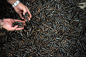 A Colombian police officer shows seized AK47 ammo in Medellin Antioquia department Colombia on September 4 2008 The Colombian police seized six...
