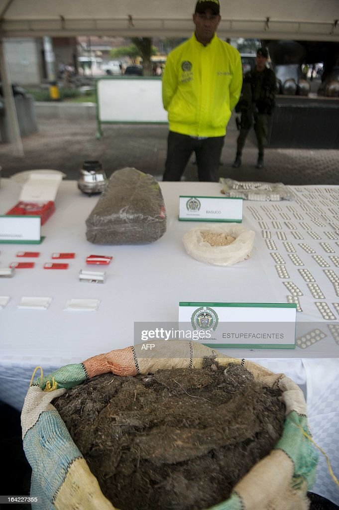 Colombian police shows marijuana seized to criminal gangs during operations at the Commune 13 -- one of the shantytowns with the highest rates of urban violence -- on March 21, 2013, in Medellin, Antioquia department, Colombia. So far this year, more than 335 people have been killed by urban conflict and more than 400 were displaced, due to gang disputes. To confront violence the government brought 1,000 new policemen. AFP PHOTO/Raul ARBOLEDA