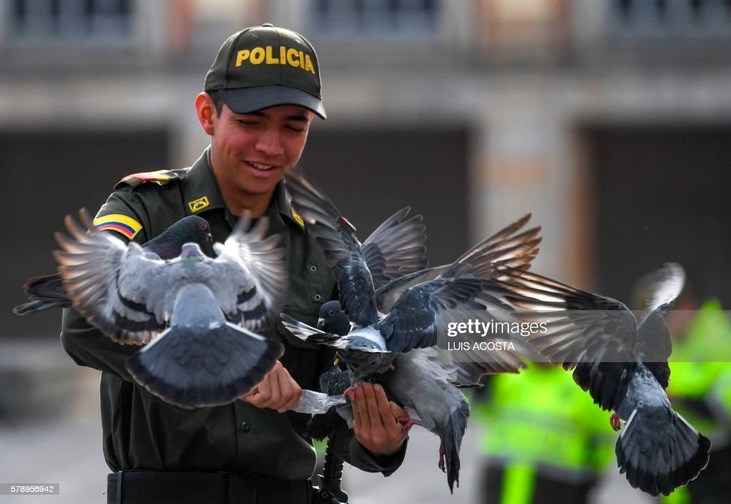 A Colombian policeman plays with pigeons at Bolivar Square in Bogota on July 22 2016. / AFP PHOTO / Luis Acosta