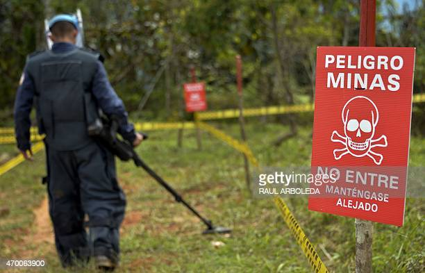 A Colombian soldier searches for land mines laid by Guerrillas fighters as part of the humanitarian demining in Campo Alegre Cocorna municipality...