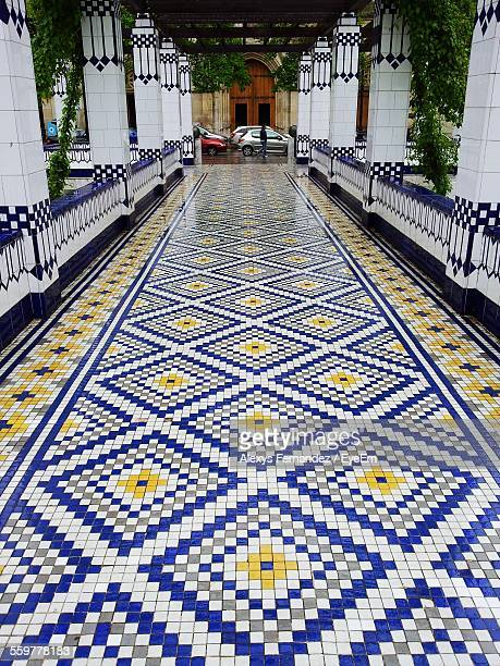 Colonnade And Floor Covered In Geometric Pattern Mosaic
