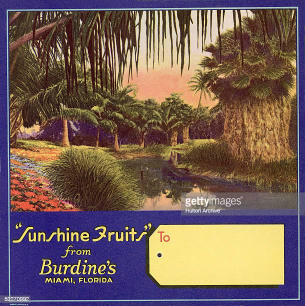 Color lithograph fruit box label for 'Sunshine Fruits' from Burdine's of Miamia Florida shows a stretch of water as it flows between a vast bed of...