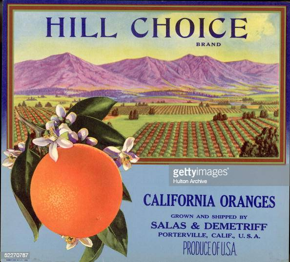 Color lithograph fruit box label shows orange attached to branch with leaves and flowers behind it is an illustration of a valley of orange groves...