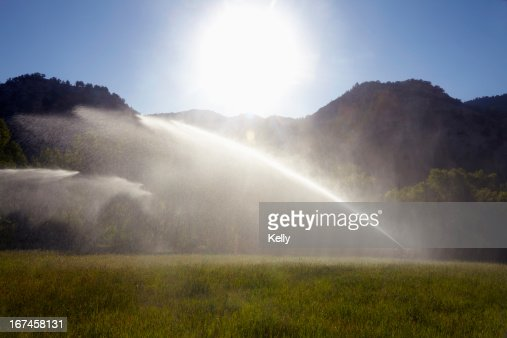 USA, Colorado, Agricultural sprinkler watering field : Stock Photo