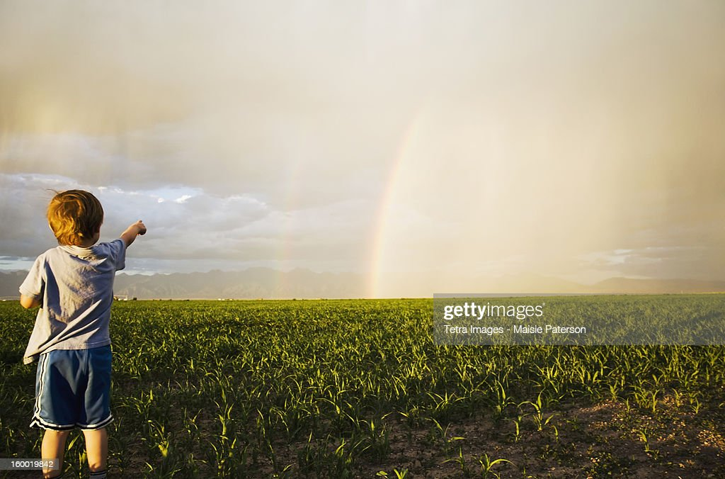 USA, Colorado, Boy (2-3) in field pointing at rainbow : Stock Photo
