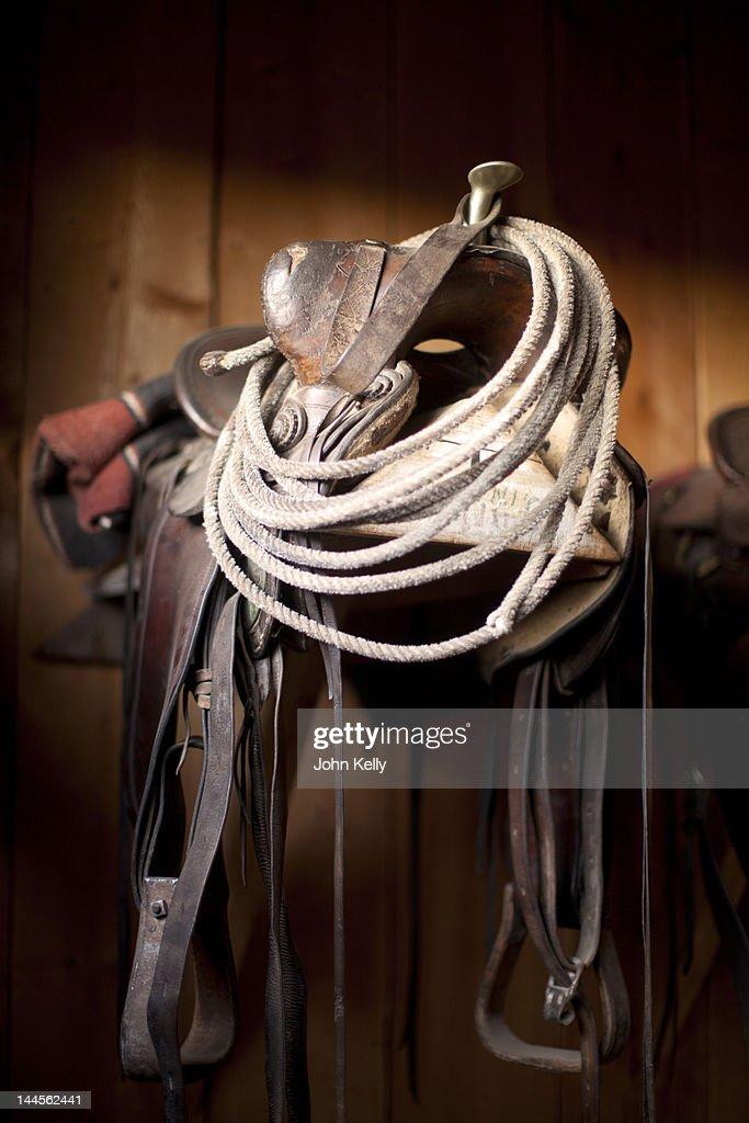 USA, Colorado, Close-up of saddle with rope