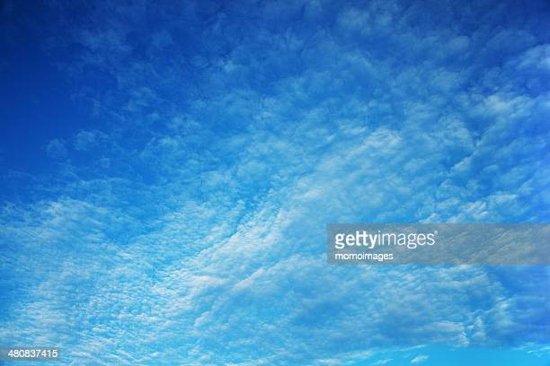 USA, Colorado, Denver County, Denver, View of blue sky
