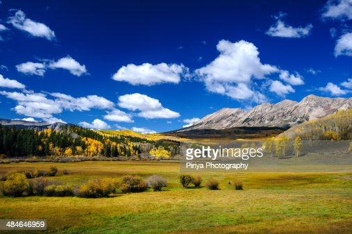 Colorado Fall Colors : Stock Photo
