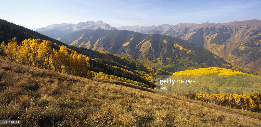 USA, Colorado, Mountain landscape with yellow aspen trees : Stock Photo