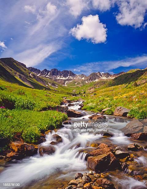 Colorado Primavera (P)