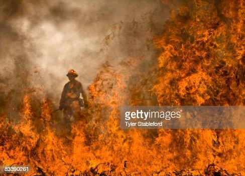 Colorado wildfire fighters on Prince Creek burn. : Stock Photo