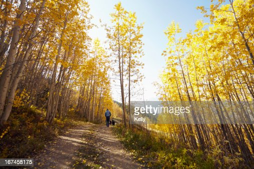 USA, Colorado, Woman walking with her dog through forest