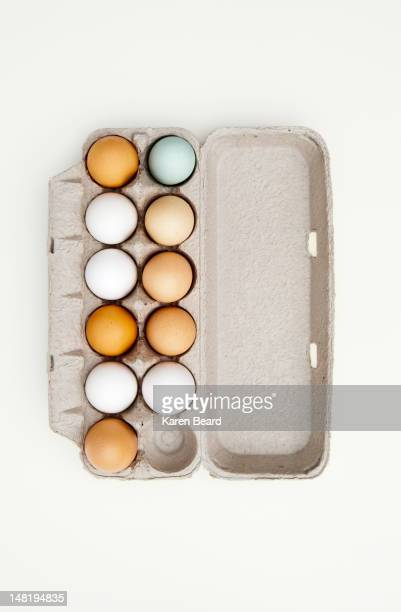 Colored eggs in egg carton