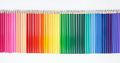 Colored wooden pencils on a white background