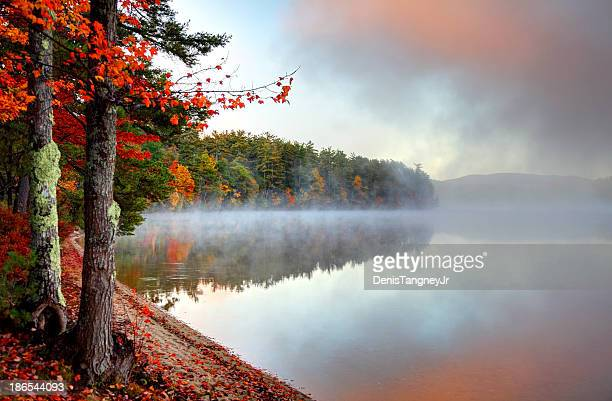 Colorful Autumn Mist in New Hampshire