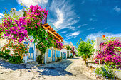 Typical traditional  Aegean Bodrum houses wirh colorful flowers. ( HDR shot )