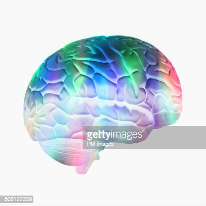 colorful brain on white background stock photo getty images