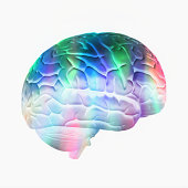 Colorful brain on white background