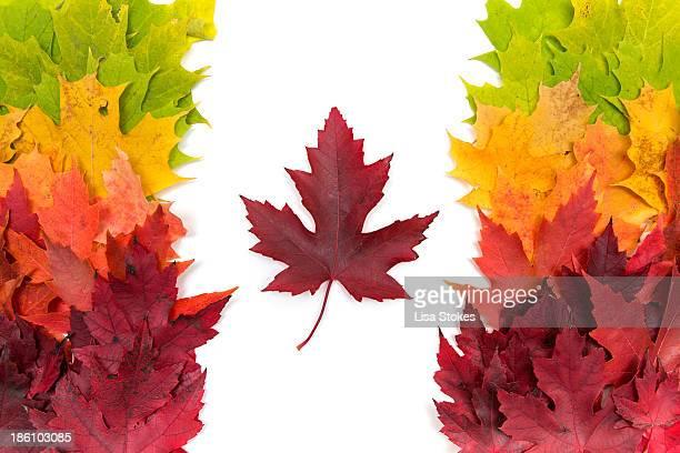 Colorful Canada