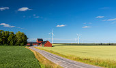 In the province of Dasland in Sweden, a few wind turbines surround a traditional red Swedish farmhouse in a yellow wheat fields. The panoramic view is composed of colorful colors, the yellow wheat, a