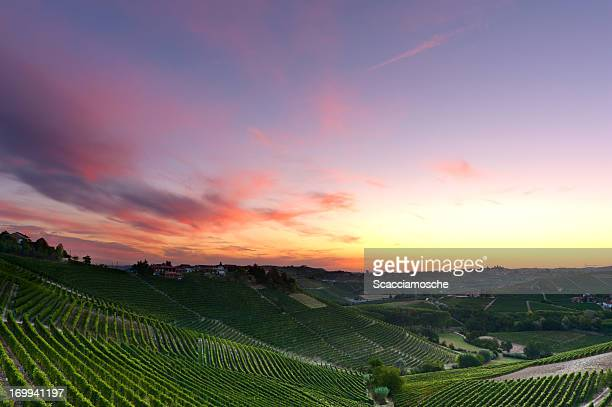Colorful dawn over the vineyards