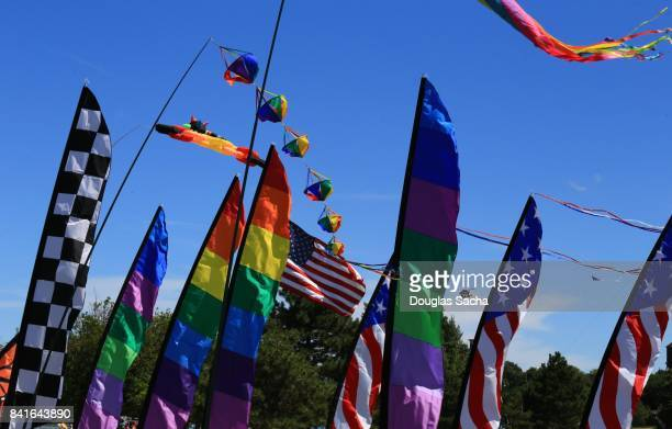 Colorful Feather Flags and Feather Banners on display