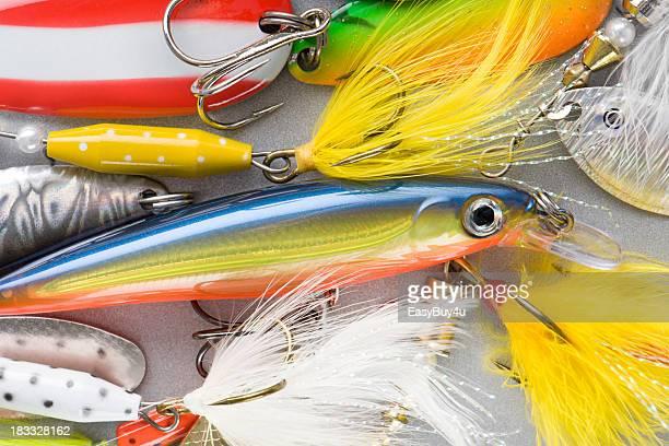 Farbenfrohen Fischen baits