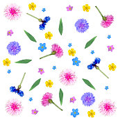 Colorful floral composition from blue, pink and yellow flowers and green leaves on a white background isolated