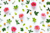 Colorful flowers and green leaves arrangement on white background.