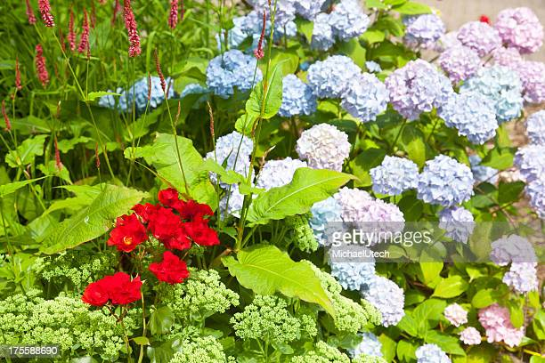 Bunte Blume Bett, Norderney