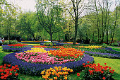 Colorful flower beds of hyacinths, tulips and other bulbs in a formal garden, Keukenhof, Netherlands