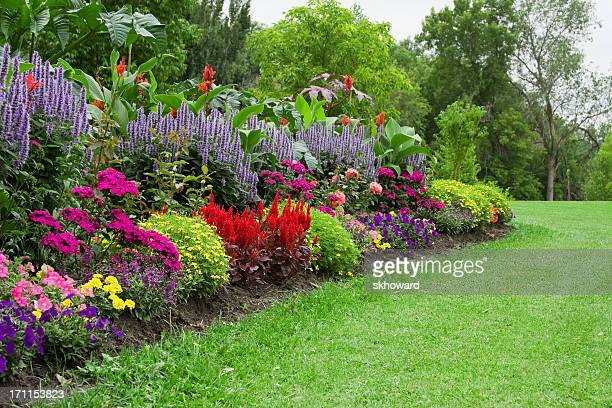Bunte Blume Garden