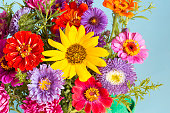Bouquet of the colorful flowers background