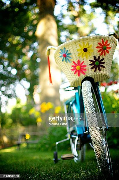 Colorful girls vintage bicycle with flower basket